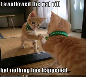 I swallowed the red pill