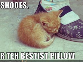 SHOOES.  R TEH BESTIST PILLOW