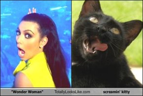"""Wonder Woman"" Totally Looks Like screamin' kitty"