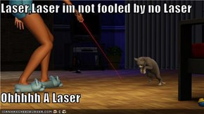 Laser,Laser im not fooled by no Laser  Ohhhhh A Laser