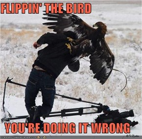 In Soviet Russia, Bird Flip You