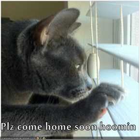 Plz come home soon hoomin