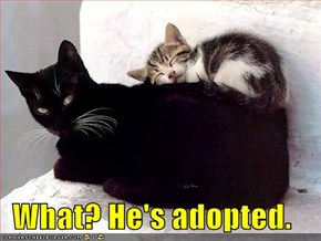 What? He's adopted.