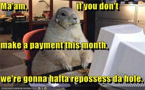 Ma'am,                            if you don't make a payment this month, we're gonna hafta repossess da hole.