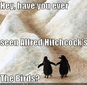 Hey, have you ever seen Alfred Hitchcock's  The Birds?