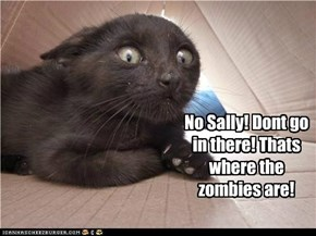 No Sally! Thats where the zombies are!