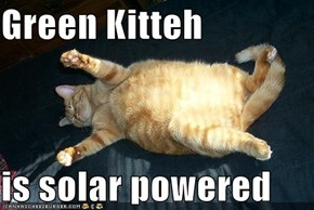 Green Kitteh  is solar powered