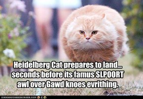 Heidelberg Cat prepares to land...seconds before its famus SLPOORT awl over Gawd knoes evrithing.