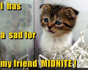 I  has a  sad for my friend  MIDNITE !