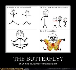 THE BUTTERFLY?