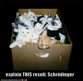 explain THIS result, Schrödinger