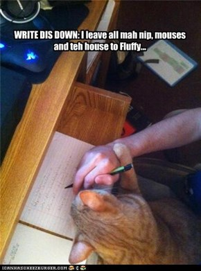 WRITE DIS DOWN: I leave all mah nip, mouses and teh house to Fluffy...