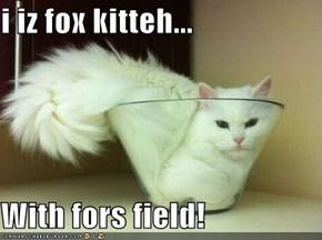 i iz fox kitteh...  With fors field!