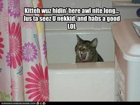 Kitteh wuz hidin' here awl nite long...Jus ta seez U nekkid, and habs a goodLOL