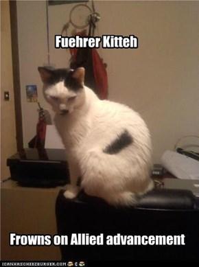 Fuehrer Kitteh