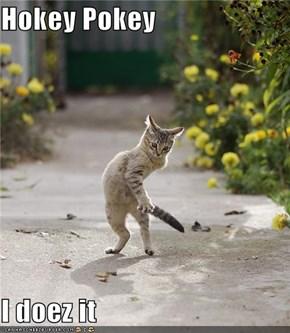 Hokey Pokey  I doez it