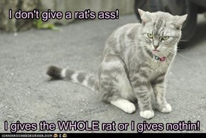 I don't give a rat's ass!