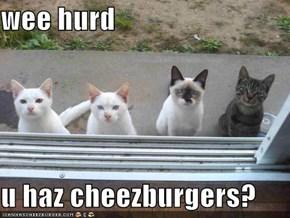 wee hurd  u haz cheezburgers?
