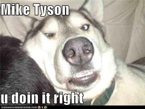Mike Tyson  u doin it right