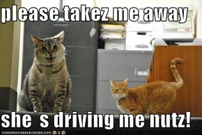 please takez me away  she`s driving me nutz!