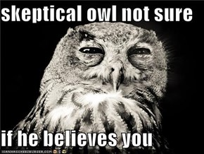 skeptical owl not sure  if he believes you