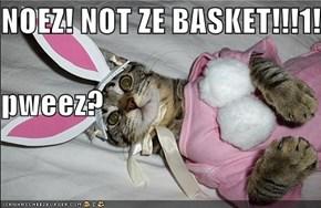 NOEZ! NOT ZE BASKET!!!1! pweez?
