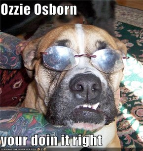 Ozzie Osborn  your doin it right