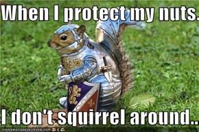 When I protect my nuts...  I don't squirrel around...