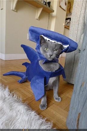 Hammercat