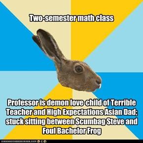 Hapless Hare
