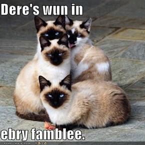 Dere's wun in  ebry famblee.