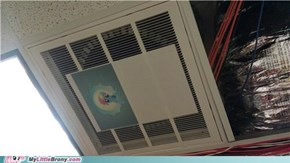 Ceiling Dash watches you work