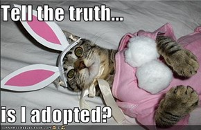Tell the truth...  is I adopted?