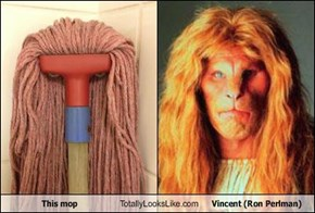 This mop Totally Looks Like Vincent (Ron Perlman)