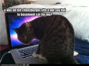 u wuz on teh cheezburger site n not say hai to basement cat for me?