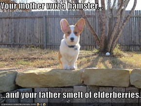 Your mother wuz a hamster...  ...and your father smelt of elderberries.