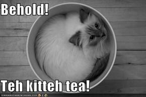 Behold!  Teh kitteh tea!