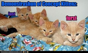 Demonstrashun of Concept Kittenz: