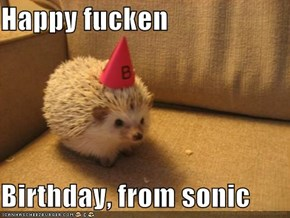 Happy fucken  Birthday, from sonic