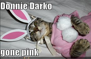 Donnie Darko  gone pink