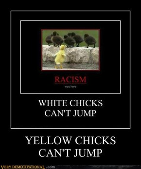 YELLOW CHICKSCAN'T JUMP