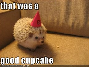that was a  good cupcake