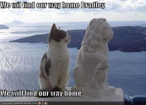 We wil find our way home Bradley  We will find our way home