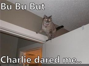 Bu Bu But  Charlie dared me..
