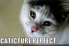 CATICTURE PERFECT