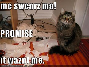 me swearz ma! PROMISE it waznt me.