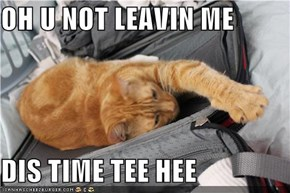 OH U NOT LEAVIN ME  DIS TIME TEE HEE