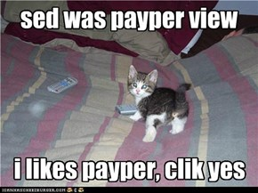 kitteh dont pay no billz
