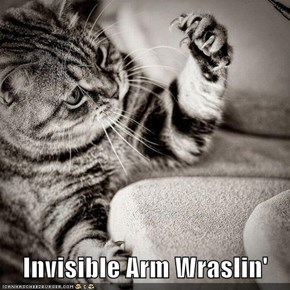 Invisible Arm Wraslin'