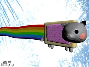 Win! Nyan cat 3D Render